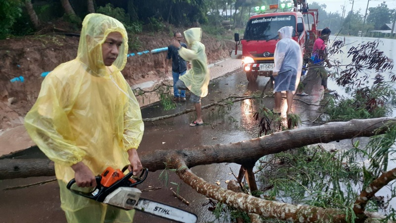 เจ้าหน้าที่เข้าเคลียร์พื้นที่บริเวณถนนที่ถูกต้นไม้ล้มขวาง