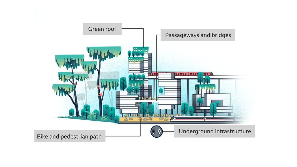 Illustration of the biomimicry concept