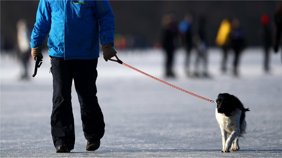 A man walks his dog on the Nannewiid, a lake frozen over as temperatures stay below zero and locals enjoy activities like speed skating, ice hockey, using sleds and walking dogs on February 12, 2021 in Oudehaske, Netherlands.