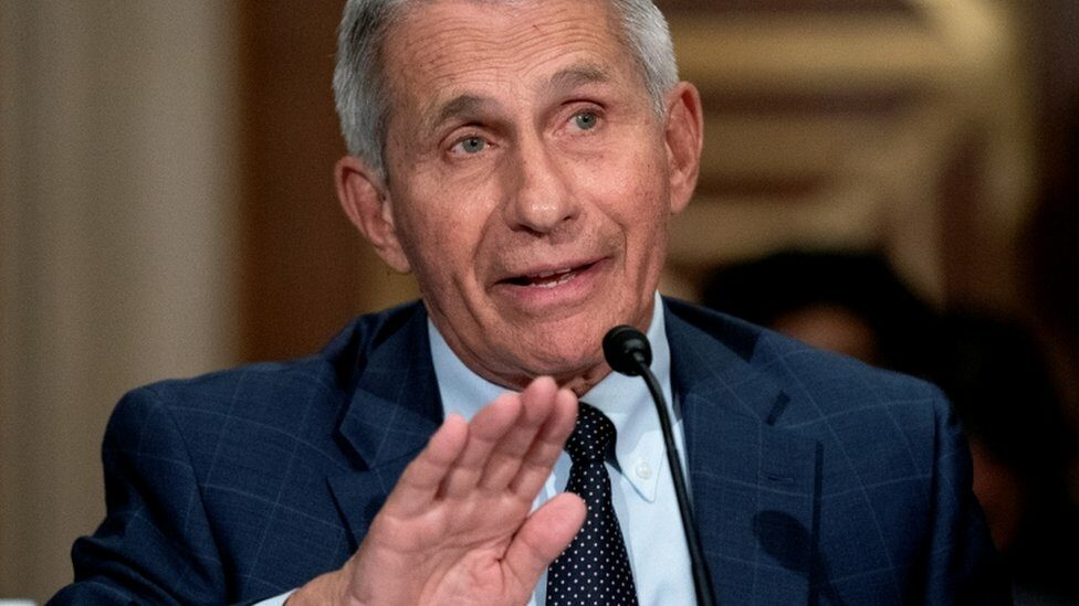 Dr Anthony Fauci, director of the National Institute of Allergy and Infectious Diseases